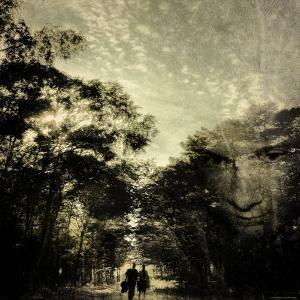 Pensive Walk through the Forest by Ewa Zauscinska