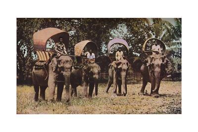'Siam', c1930s
