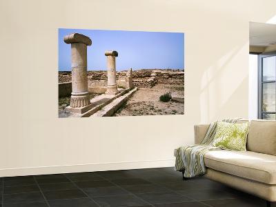 Excavations of Ancient Greek Colony of Ikaros-Mark Daffey-Wall Mural
