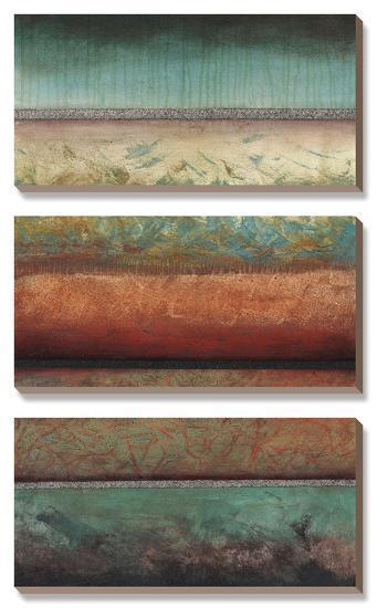 Excitement-Laurie Fields-Canvas Art Set