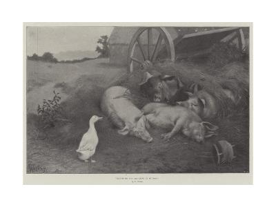 Excuse Me, You are Lying on My Nest-William Weekes-Giclee Print