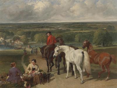 Exercising the Royal Horses, 1847-55-John Frederick Herring Snr-Giclee Print