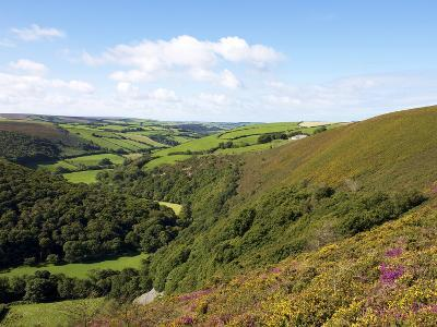 Exmoor From County Gate, Looking Towards Brendon, Exmoor National Park, Somerset, England, Uk-Jeremy Lightfoot-Photographic Print