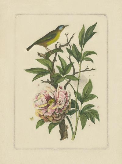 Exotic Bird and Botanical I--Art Print