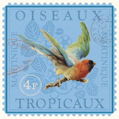 Exotic Birds II-Gwen Aspall-Giclee Print