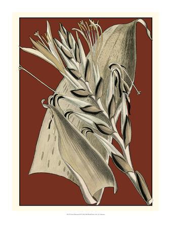 https://imgc.artprintimages.com/img/print/exotic-botanical-ii_u-l-ph6eo70.jpg?p=0