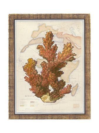 https://imgc.artprintimages.com/img/print/exotic-map-with-coral-iii_u-l-q1bgj9m0.jpg?p=0