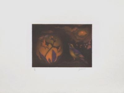 Expectative-Laurent Schkolnyk-Limited Edition