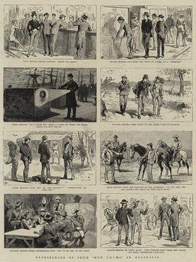 Experiences of Some New Chums in Australia--Giclee Print