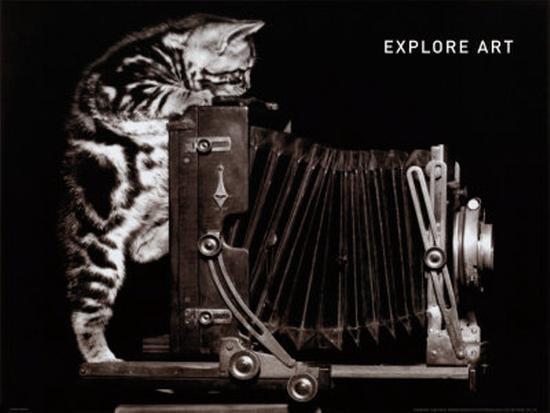Explore Art--Art Print
