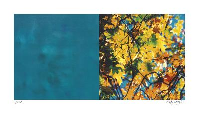 Exposure 101-Teresa Camozzi-Giclee Print