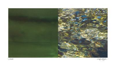 Exposure 102-Teresa Camozzi-Giclee Print