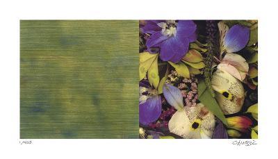 Exposure 107-Teresa Camozzi-Giclee Print