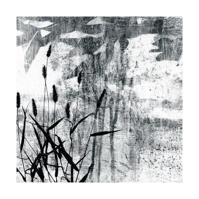 Exposure II-Jennifer Goldberger-Premium Giclee Print