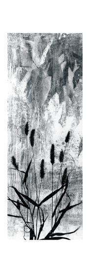 Exposure III-Jennifer Goldberger-Premium Giclee Print