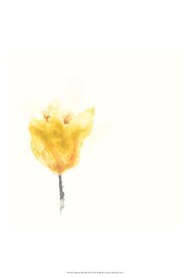 Expressive Blooms VIII-June Erica Vess-Art Print