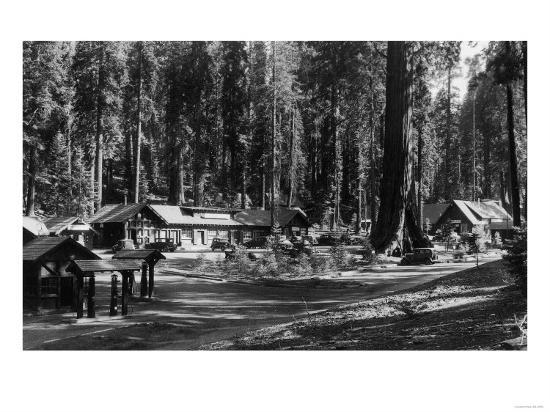 Exterior View of the Giant Forest Lodge - Sequoia National Park, CA-Lantern Press-Art Print