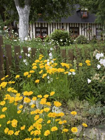 https://imgc.artprintimages.com/img/print/exuberant-garden-and-half-timbered-cottage-in-marais-vernier-region_u-l-pd5w6z0.jpg?p=0