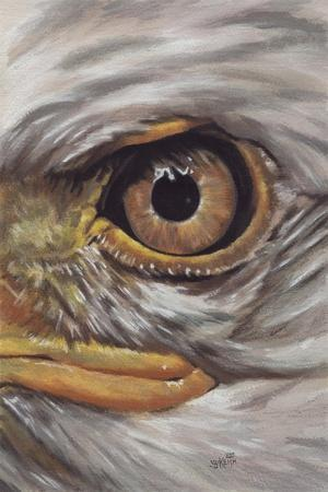 Eye-Catching Bald Eagle-Barbara Keith-Giclee Print