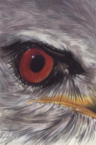 Eye Catching Kite-Barbara Keith-Giclee Print