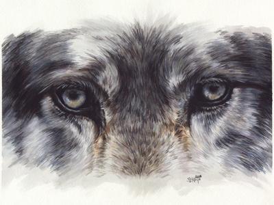 https://imgc.artprintimages.com/img/print/eye-catching-wolf_u-l-pykal80.jpg?p=0
