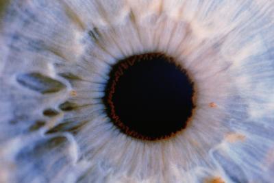 Eye-Martin Dohrn-Photographic Print