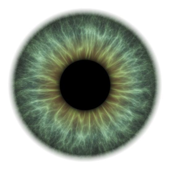 Eye-PASIEKA-Photographic Print