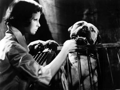 Eyes Without A Face, (aka Les Yeux Sans Visage), Edith Scob, 1960--Photo
