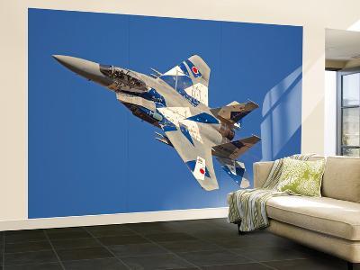 F-15Dj Eagle of the Japan Air Self Defense Force's Hiko Kyodatai Aggressor Squadron-Stocktrek Images-Wall Mural – Large