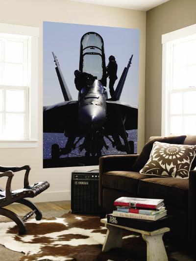 F/A-18F Super Hornet--Wall Mural
