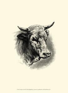 Antique Cattle II by F. Lehnert