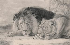 Sleeping Lion and Lioness by F^ Lewis