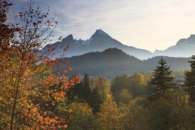Forest and Watzmann in Autumn, Berchtesgaden National Park, Bavaria, Germany