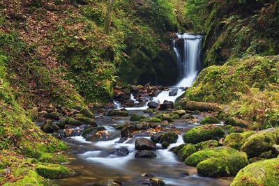 Geroldsau Waterfall in Autumn, Black Forest, Germany
