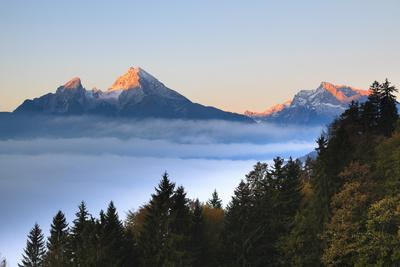 Trees and Watzmann Mountain in Autumn, Berchtesgaden National Park, Bavaria, Germany