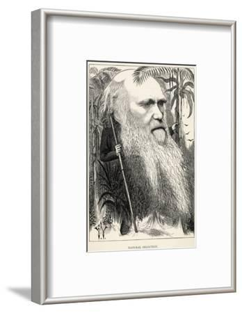 Charles Darwin, Depicted as a Wild Man of the Jungle