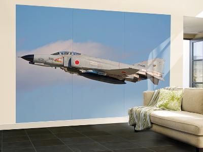 F4-E Phantom of the Japan Air Self-Defense Force-Stocktrek Images-Wall Mural – Large
