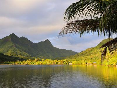 Faaroa Bay and Mount Oropiro, Raiatea, French Polynesia, South Pacific Ocean, Pacific-Jochen Schlenker-Photographic Print