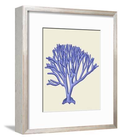 Blue Corals c