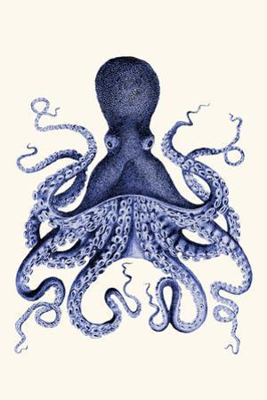 Blue Octopus 3 by Fab Funky