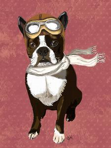 Boston Terrier Flying Ace by Fab Funky
