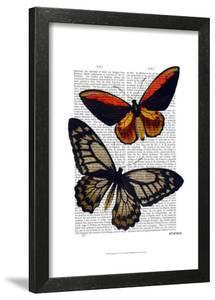 Butterflies 2 by Fab Funky