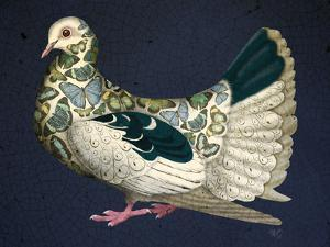 Butterfly Dove by Fab Funky