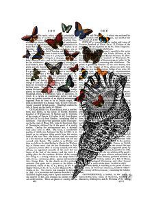 Conch Shell and Butterflies by Fab Funky