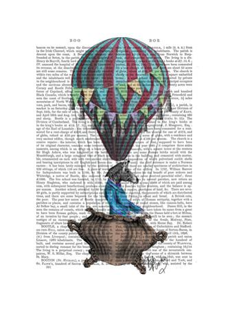 Flying Zebra by Fab Funky