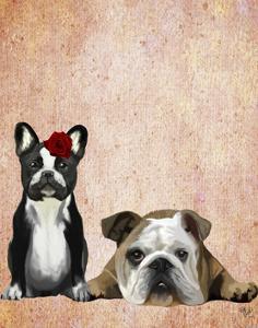 French Bulldog and English Bulldog by Fab Funky