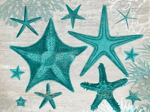 Green Starfish Collection by Fab Funky