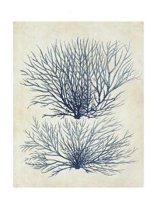 Indigo Blue Seaweed 1 a by Fab Funky