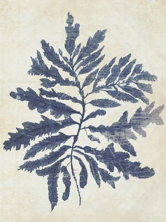 Indigo Blue Seaweed 2 b