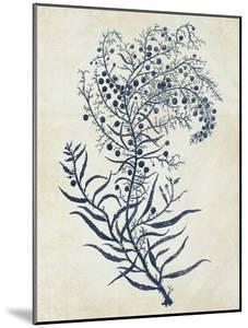 Indigo Blue Seaweed 3 c by Fab Funky